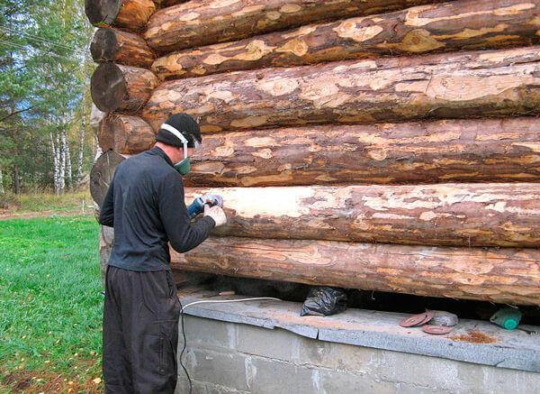 Борьба с точильщиками в деревянном доме