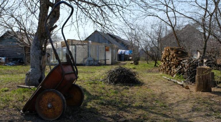 Апрель: работы в саду
