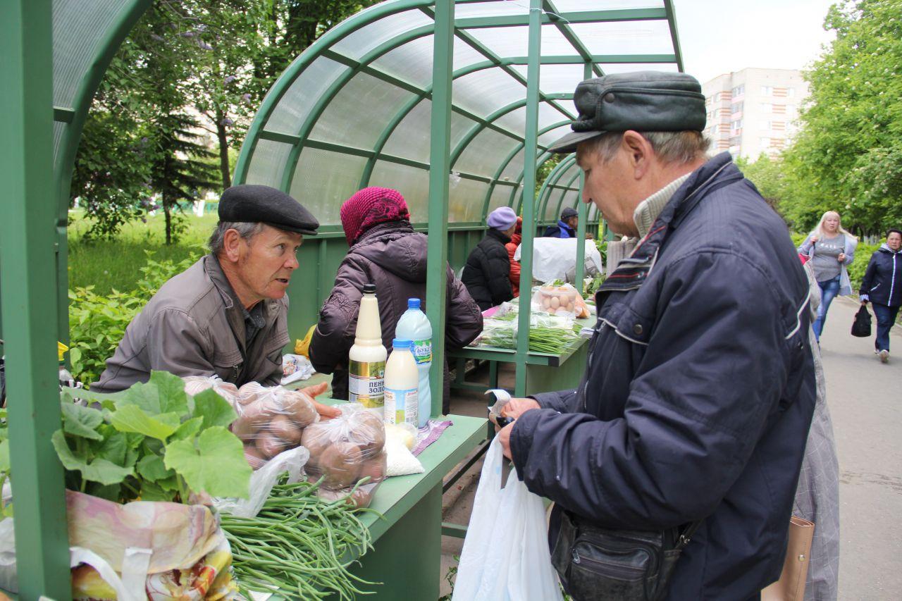 Может ли дачник продавать на рынке лук-укроп?