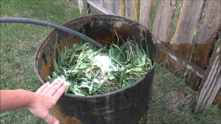 Удобрение для огурцов из сорняков