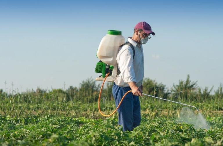 Гербициды в огороде: стоит ли применять?