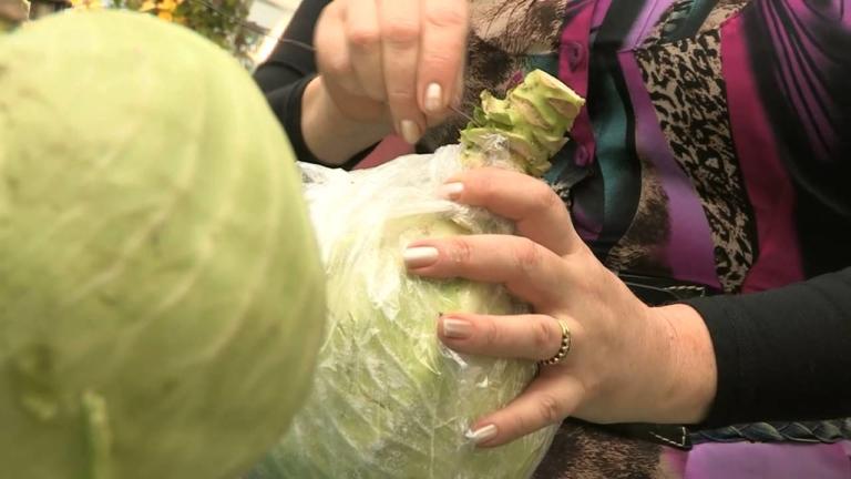 Хранение капусты: стоит ли отрезать ножку?