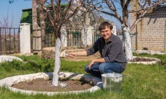 Чем весной помочь саду