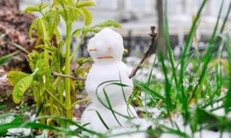 Что делать садоводу в аномально теплую погоду