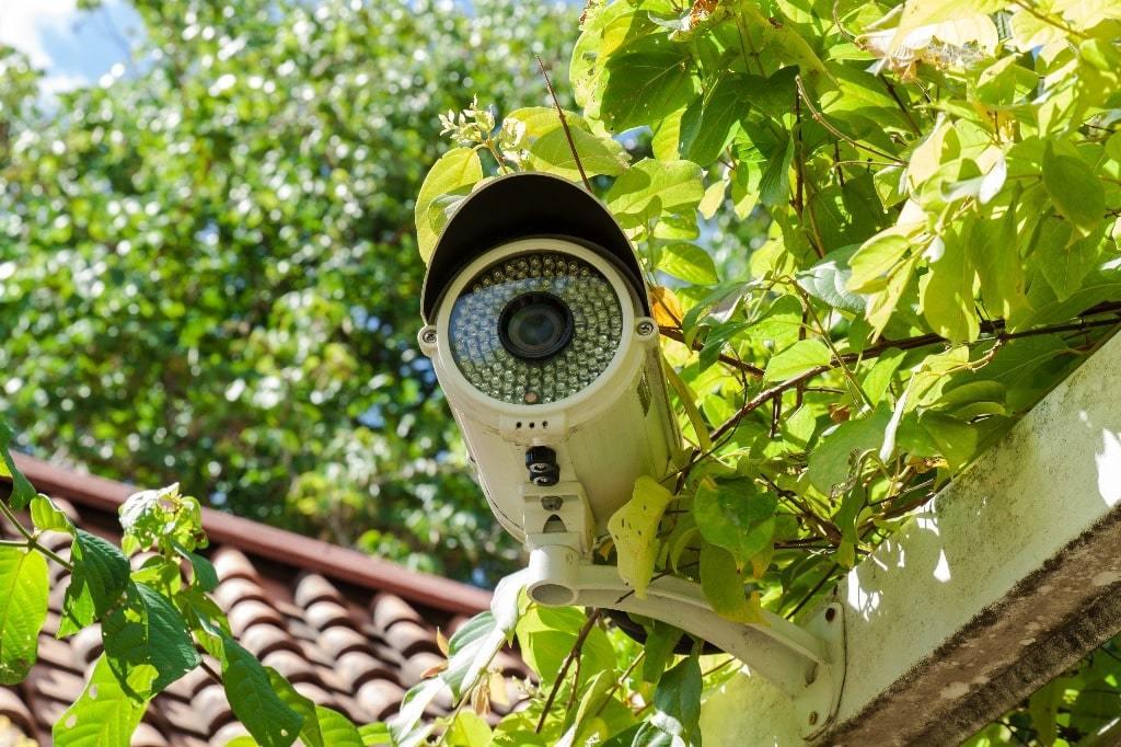 Может ли председатель СНТ устанавливать видеокамеры?