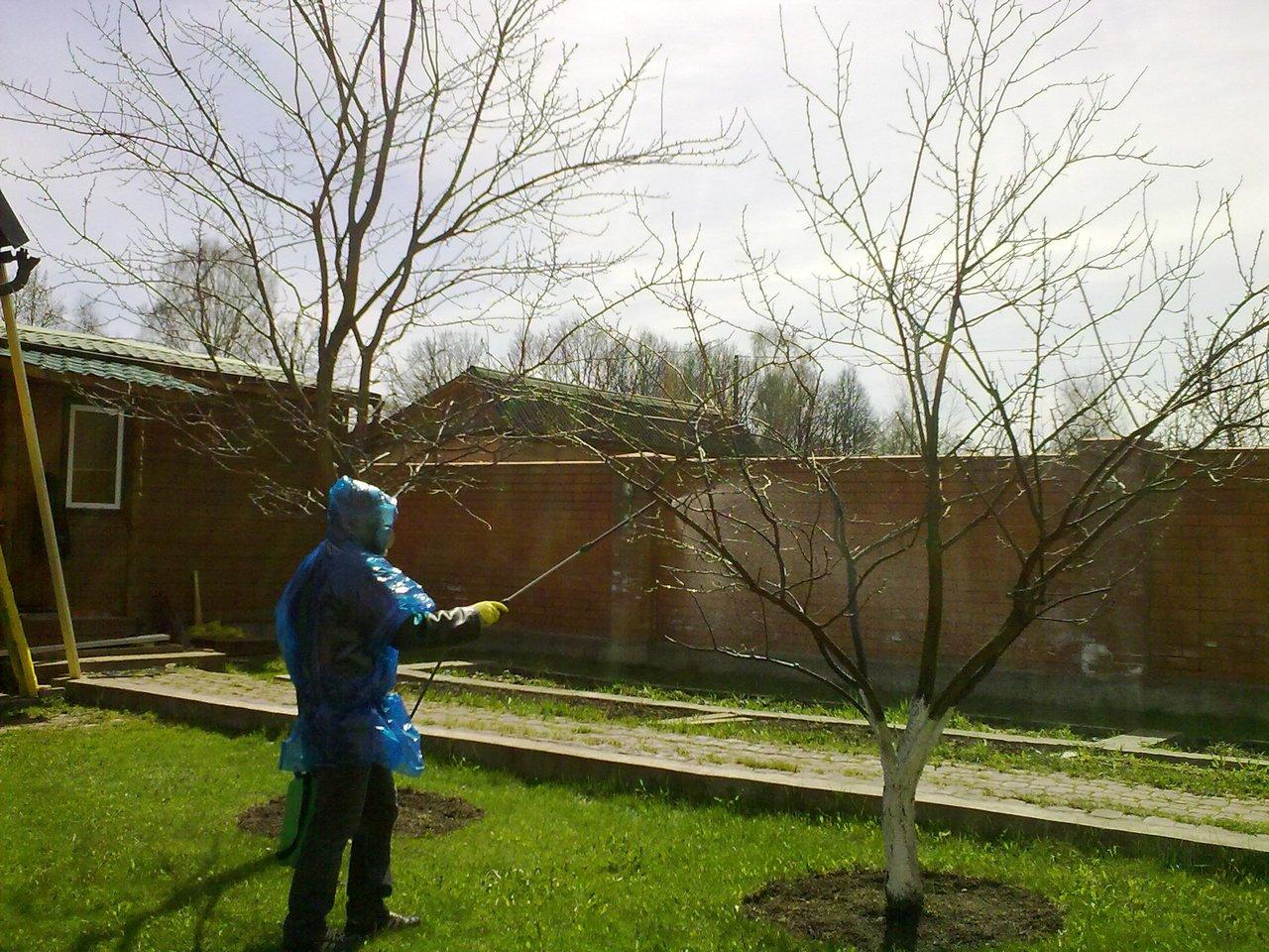 Вторичная обработка сада