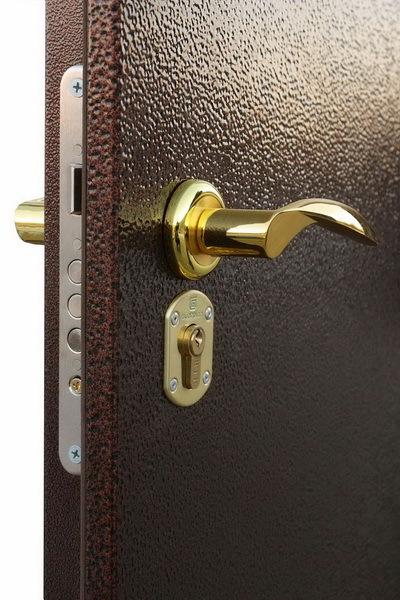 Металлическая дверь или охранная сигнализация: как сделать правильный выбор