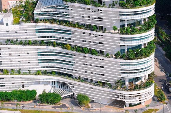 Экоустойчивая архитектура