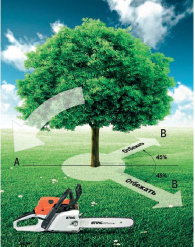 Правила валки деревьев