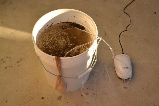 Как заварить компостный чай