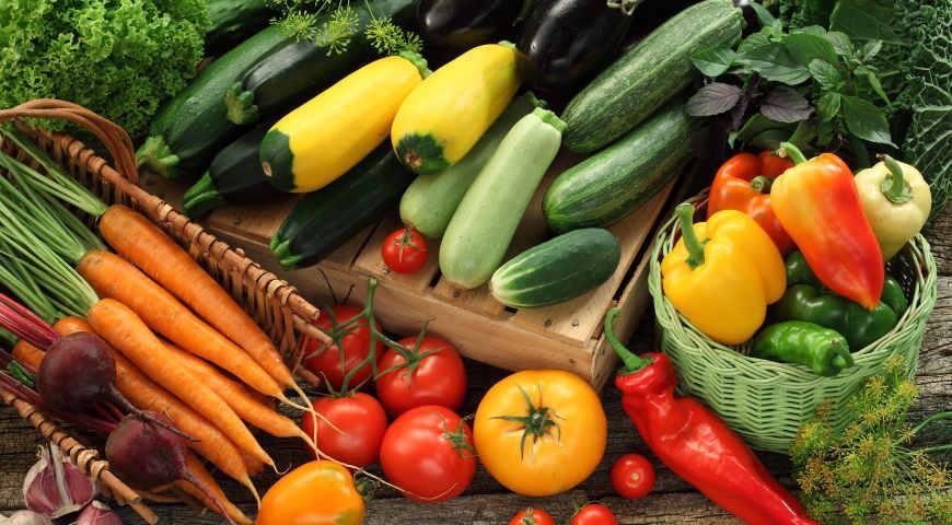 Выбираем семена овощей: важно знать специфику сорта