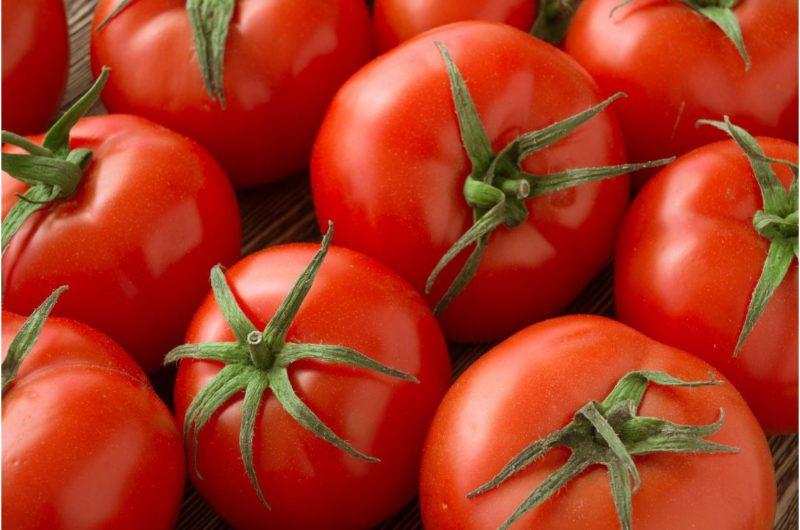 В поисках идеального сорта томатов