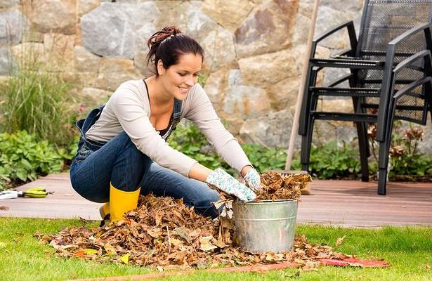 Польза от весеннего мусора