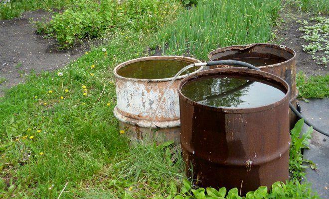 Как сэкономить поливную воду
