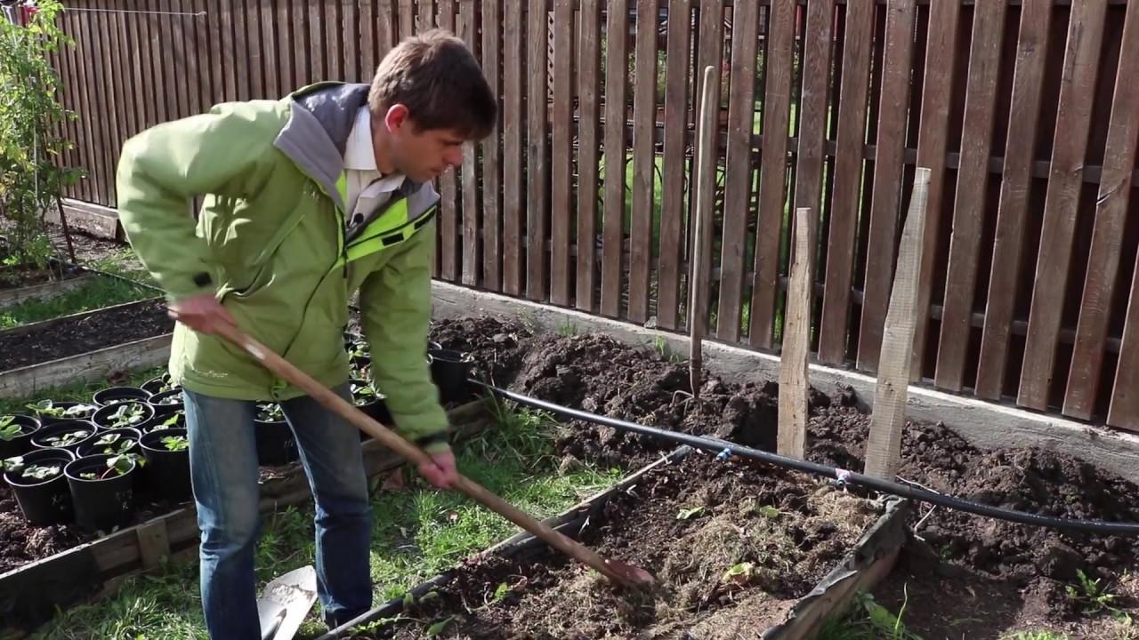 Готовим почву с осени