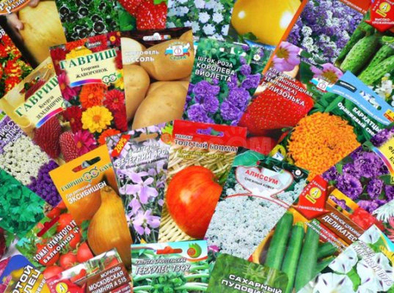 Семена покупаю не по фотографии