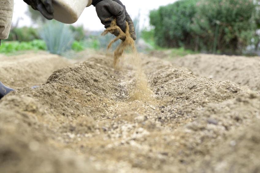 Костная мука - чем полезна и для каких растений она необходима?