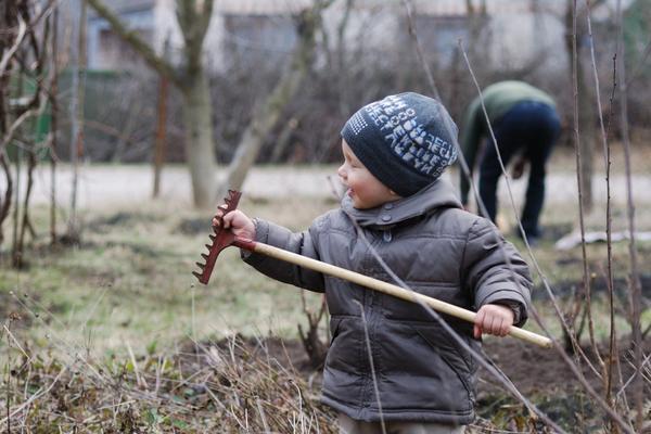 Апрельские заботы в саду и огороде