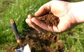 Как узнать какая у вас почва?