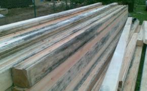 Если почернела древесина