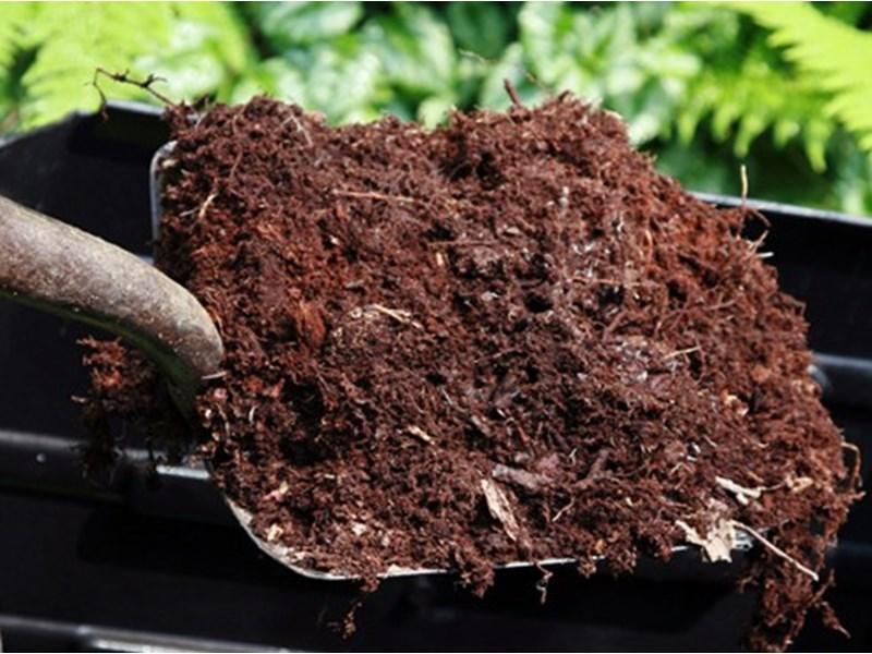 Какие ошибки превращают компост в отраву