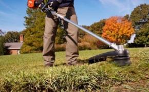 8 вещей, которые нужны вашему газону перед зимой