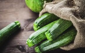 Технология выращивания цукини — нежного и полезного овоща
