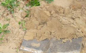 Повышение плодородия песчаных почв осенью с помощью органических удобрений