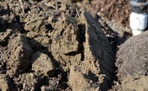 7 материалов для структурирования тяжелых почв