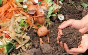 Улучшение почвы с помощью отходов