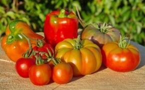 Как быстро получить урожай томатов и перцев