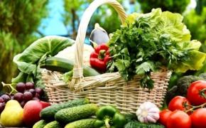 Какие подкормки и в какие сроки следует применять, чтобы получить хороший урожай овощей