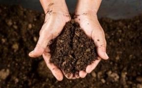 Работы с почвой повышающие ее плодородие